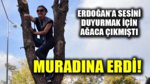 Erzurum'da ağaca çıkarak eşi için sesini Erdoğan'a duyurmaya çalışan Kayacı'nın mutlu günü