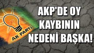 AKP'de oy kaybının nedeni başka!