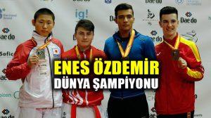 Enes Özdemir, Karate Dünya şampiyonu!