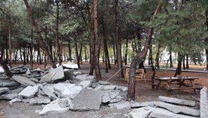 AKP'li belediye ormanı betonla kapladı tepki gelince vazgeçti