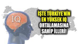 İşte Türkiye'nin IQ ortalaması en yüksek şehirleri