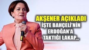 Meral Akşener, Bahçeli'nin Erdoğan'a taktığı lakabı açıkladı