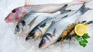 Balık fiyatlarına fırtına etkisi!