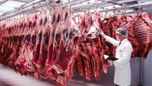 Ürküten tablo! Kırmızı et üretimi yüzde 12.6 azaldı