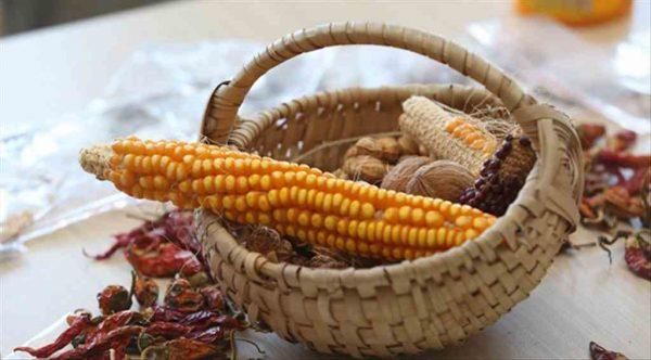 Gaziemir'de yerli tohum takas şenliği düzenlendi