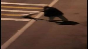 Köpeği araçların önüne atmıştı! Cezaevinde çıkınca başına bakın ne geldi