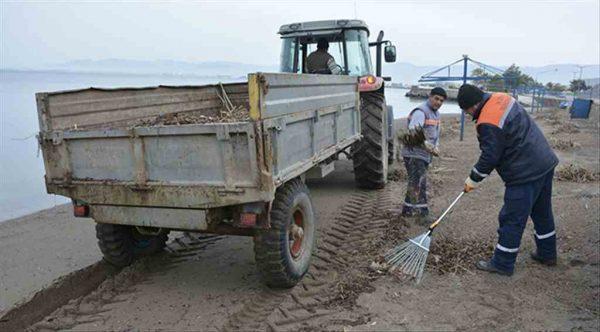 Dikili'de kıyı temizlik çalışmaları tam gaz sürüyor