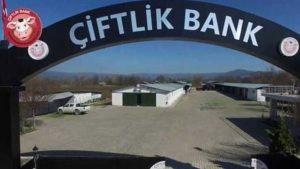Çiftlikbank Yönetim Kurulu Üyesi gözaltına alındı