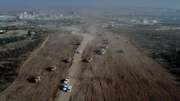 Greenpeace anketi: En büyük sorun 'Orman Katliamı'