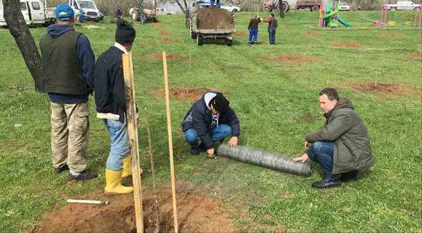Erdek'te 150 kiraz fidanı toprakla buluştu