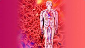 Damar sertliği (Ateroskleroz) nedir? Belirtileri ve tedavisi…