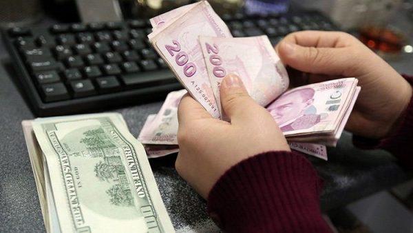 Fırsatçılar Türk Lirası'nı unuttu