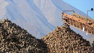 4 şeker fabrikası daha gitti! Devlet 415 milyon TL zarar etti