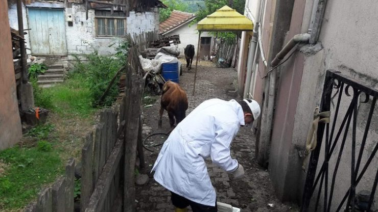 Şarbon virüsü önlemi