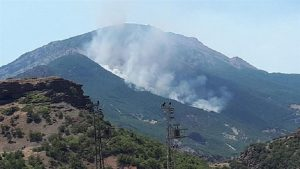 Tunceli'deki yangınlarla ilgili Baro'dan açıklama