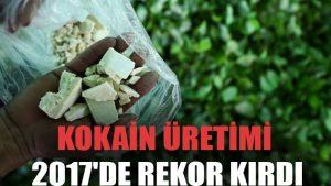 Kokain üretimi 2017'de rekor kırdı