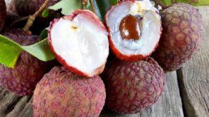 Kral meyvesi denilen Liçi meyvesi nedir?