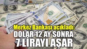 Merkez Bankası açıkladı: Dolar 12 ay sonra 7 lirayı aşar