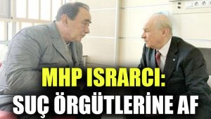 MHP ısrarcı: Suç örgütlerine af