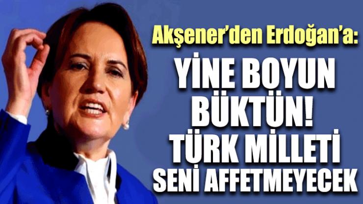 Meral Akşener: Yine boyun büktün! Türk milleti seni affetmeyecek