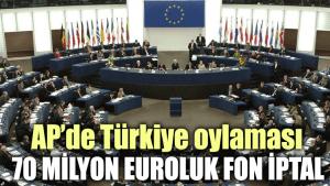 AP'de Türkiye oylaması: 70 milyon euroluk fon iptal