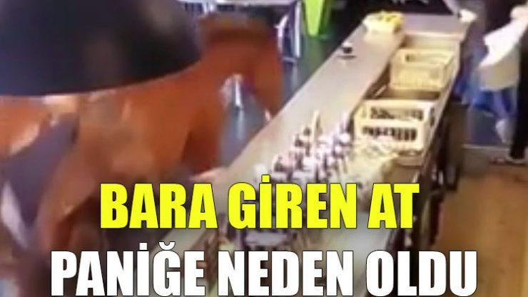 Bara giren at paniğe neden oldu