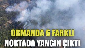 Ormanda 6 farklı noktada yangın çıktı
