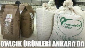 Ovacık ürünleri Ankara'da