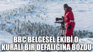BBC belgesel ekibi o kuralı bir defalığına bozdu