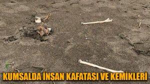 Kumsalda insan kafatası ve kemikleri