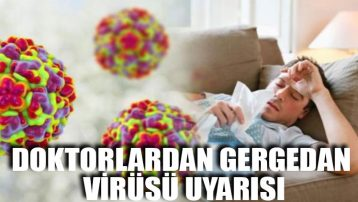 Doktorlardan gergedan virüsü uyarısı
