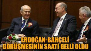 Erdoğan-Bahçeli görüşmesinin saati belli oldu