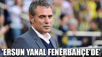 'Ersun Yanal Fenerbahçe'de'