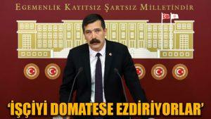 Erkan Baş: Asgari ücret en büyük zalimliktir, işçiyi domatese ezdiriyorlar