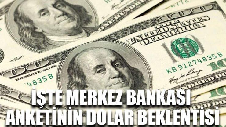 İşte Merkez Bankası anketinin dolar beklentisi
