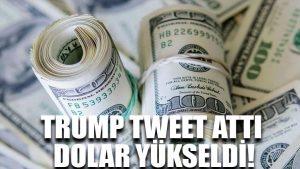 Trump tweet attı dolar yükseldi!