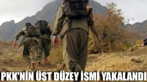 PKK'nin üst düzey ismi yakalandı