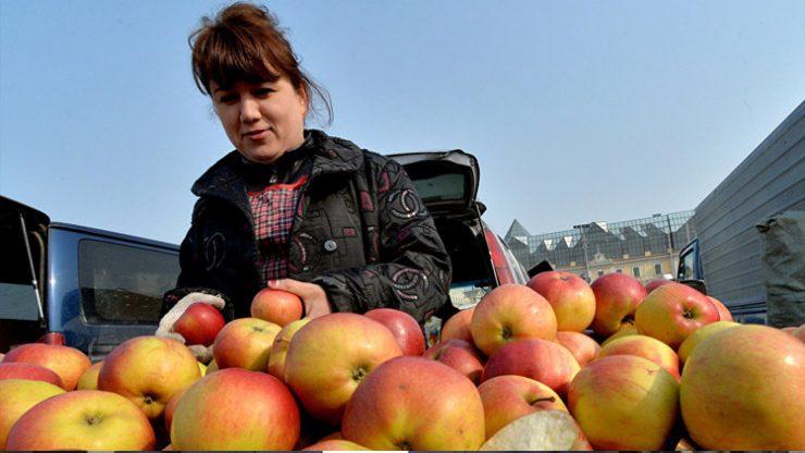 Rusya, 19 ton elmayı Türkiye'ye geri gönderdi! Sebebi…
